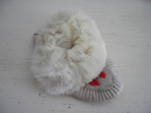 Seriously: one baby moccasin