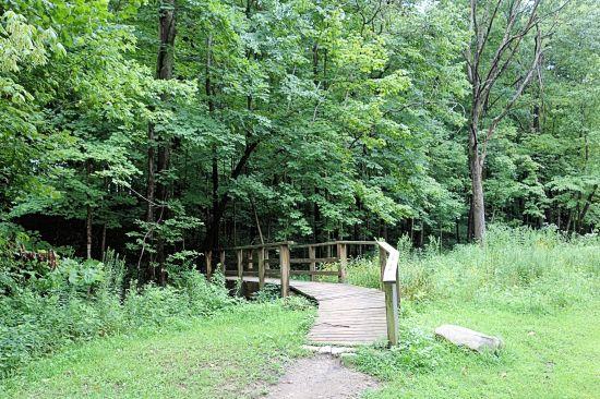 2016-08-46-fort-harrison-park-trail